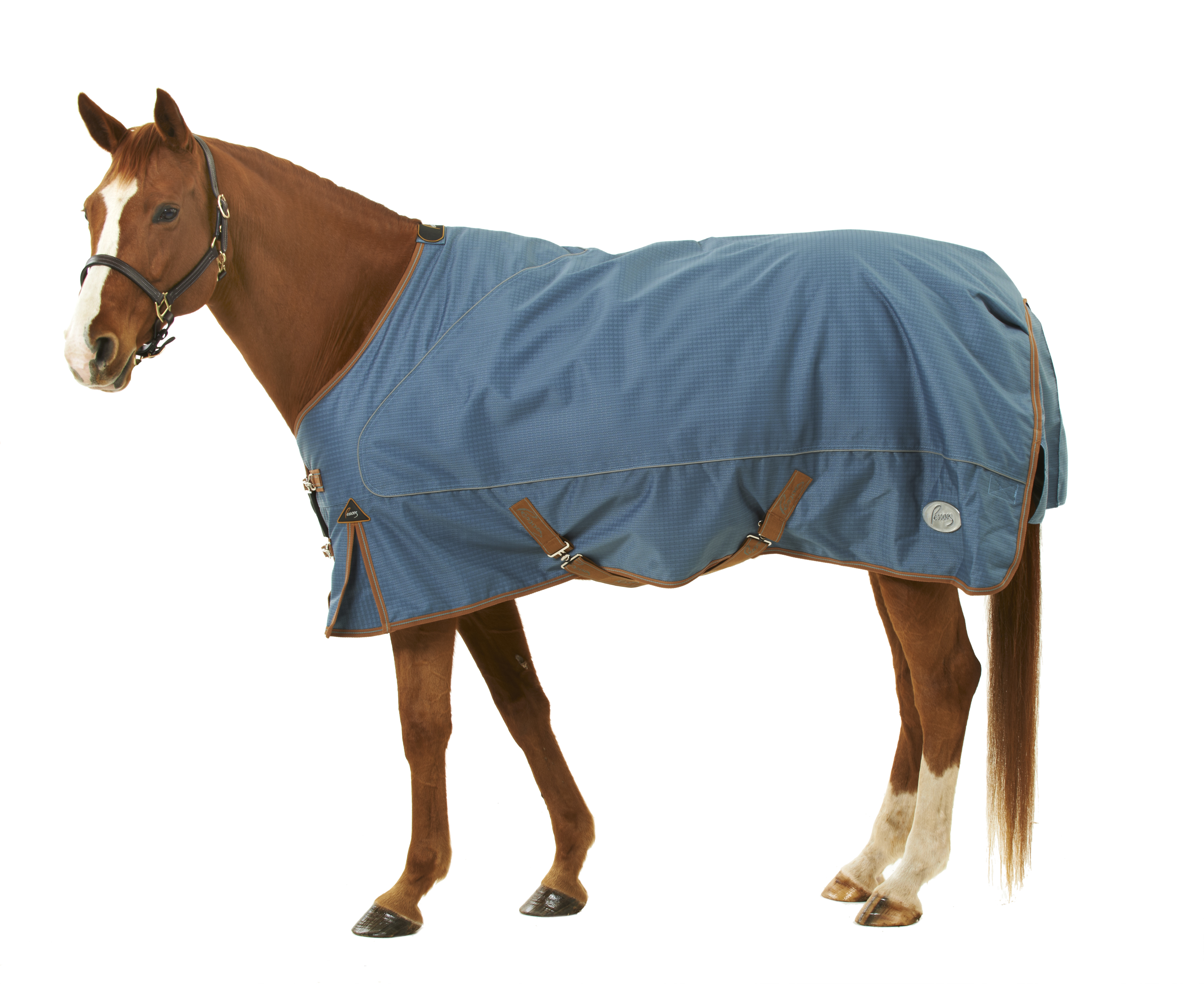 Pessoa 1680D Turnout Blanket with 360G Fill