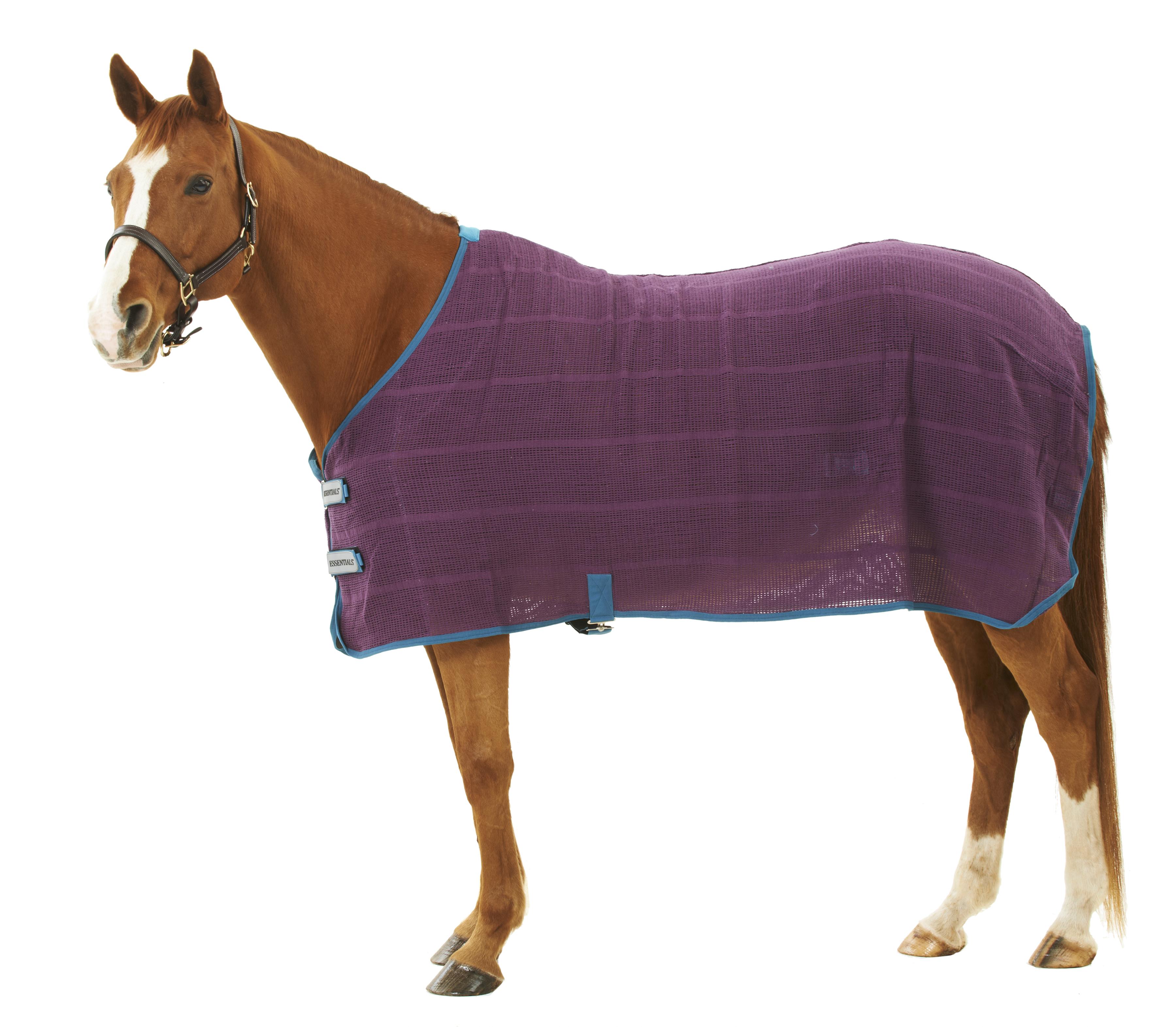 Centaur Irish Knit