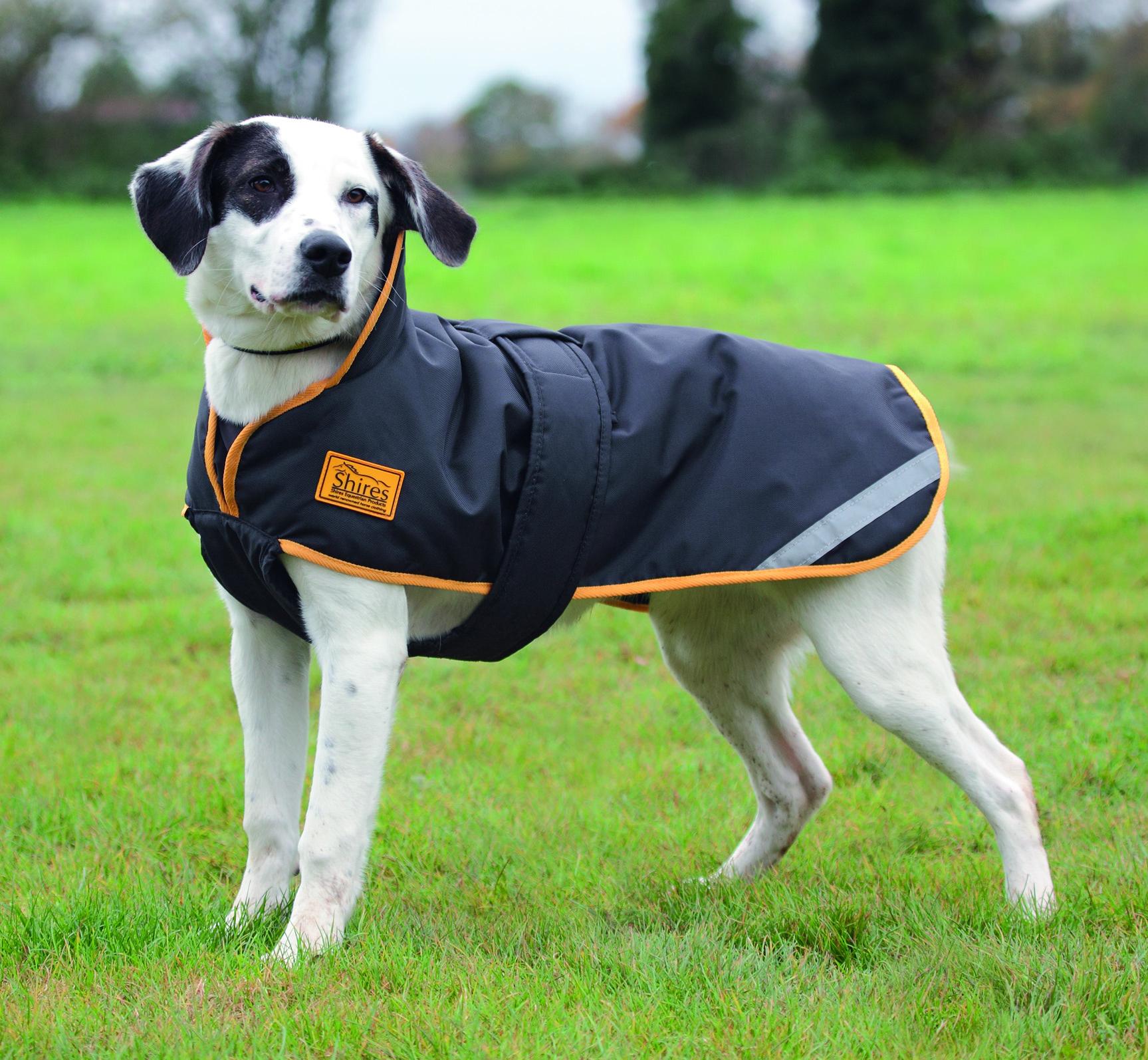 Shires Stormbreaker Dog Coat