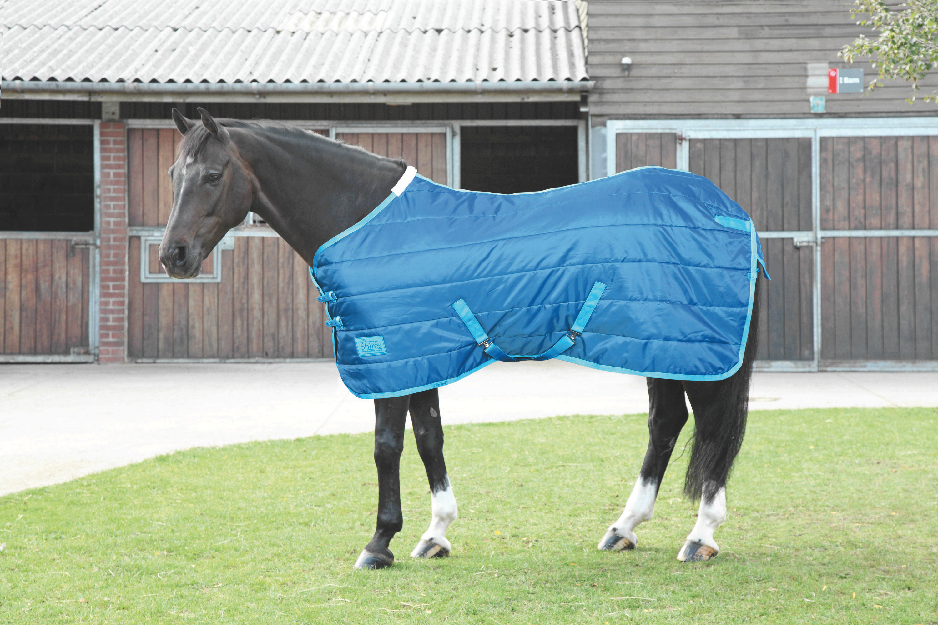 Shires Tempest 100 Lw Stable Blanket