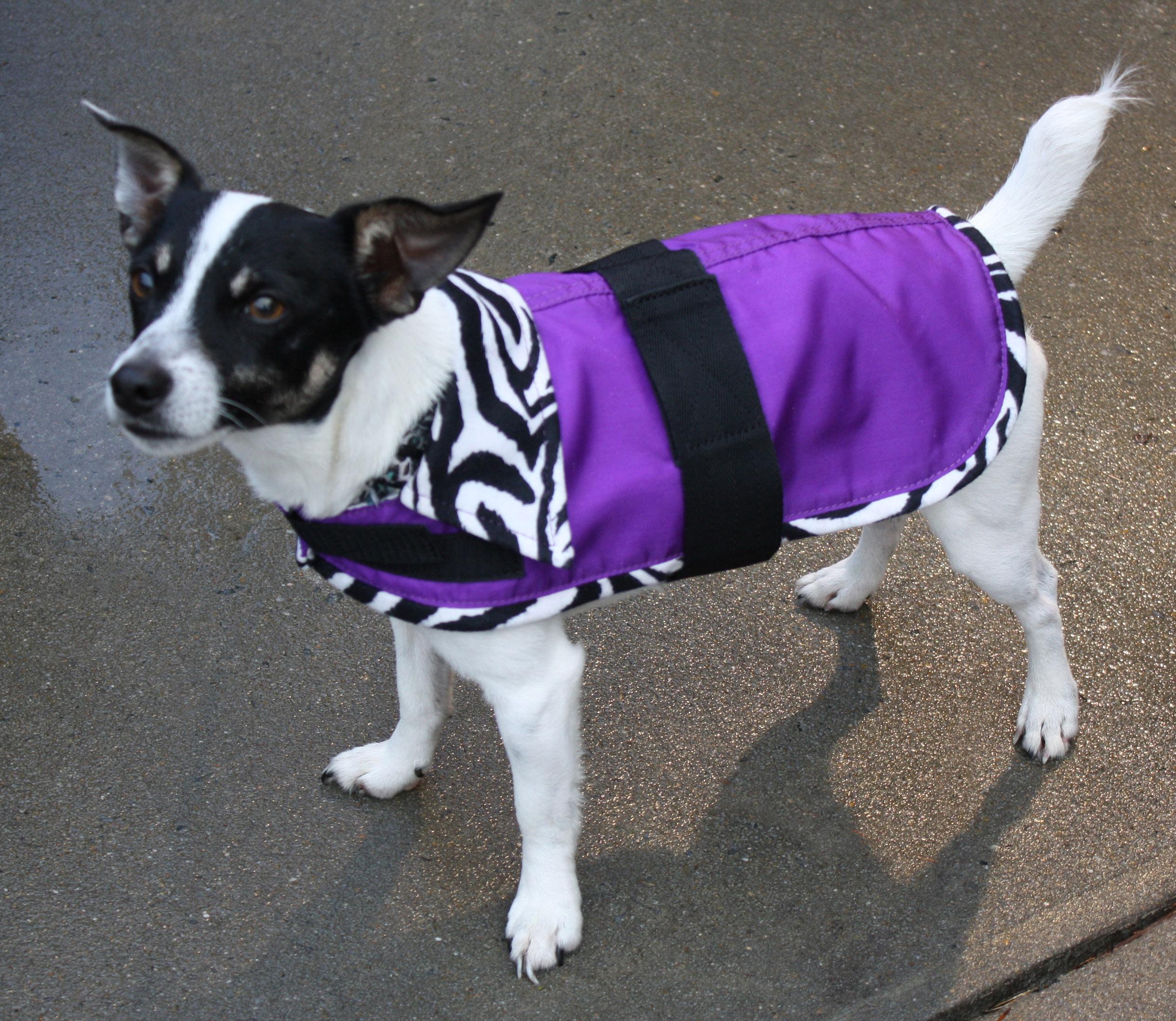 Lami-Cell Zebra Fleece Lined Dog Coat