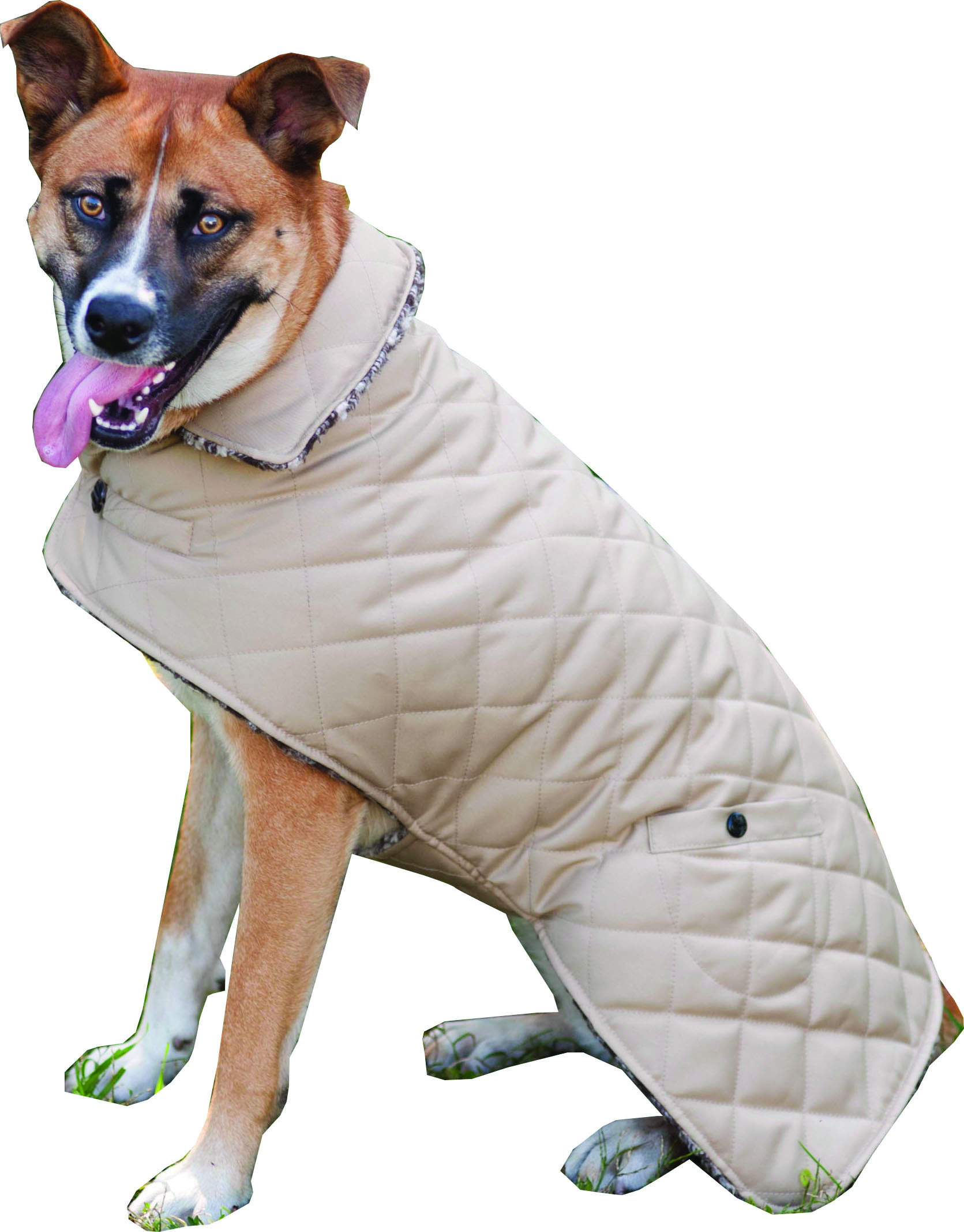 Reversible Barn Dog Coat