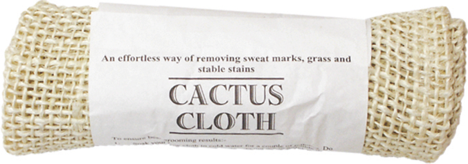 Action Cactus Cloth