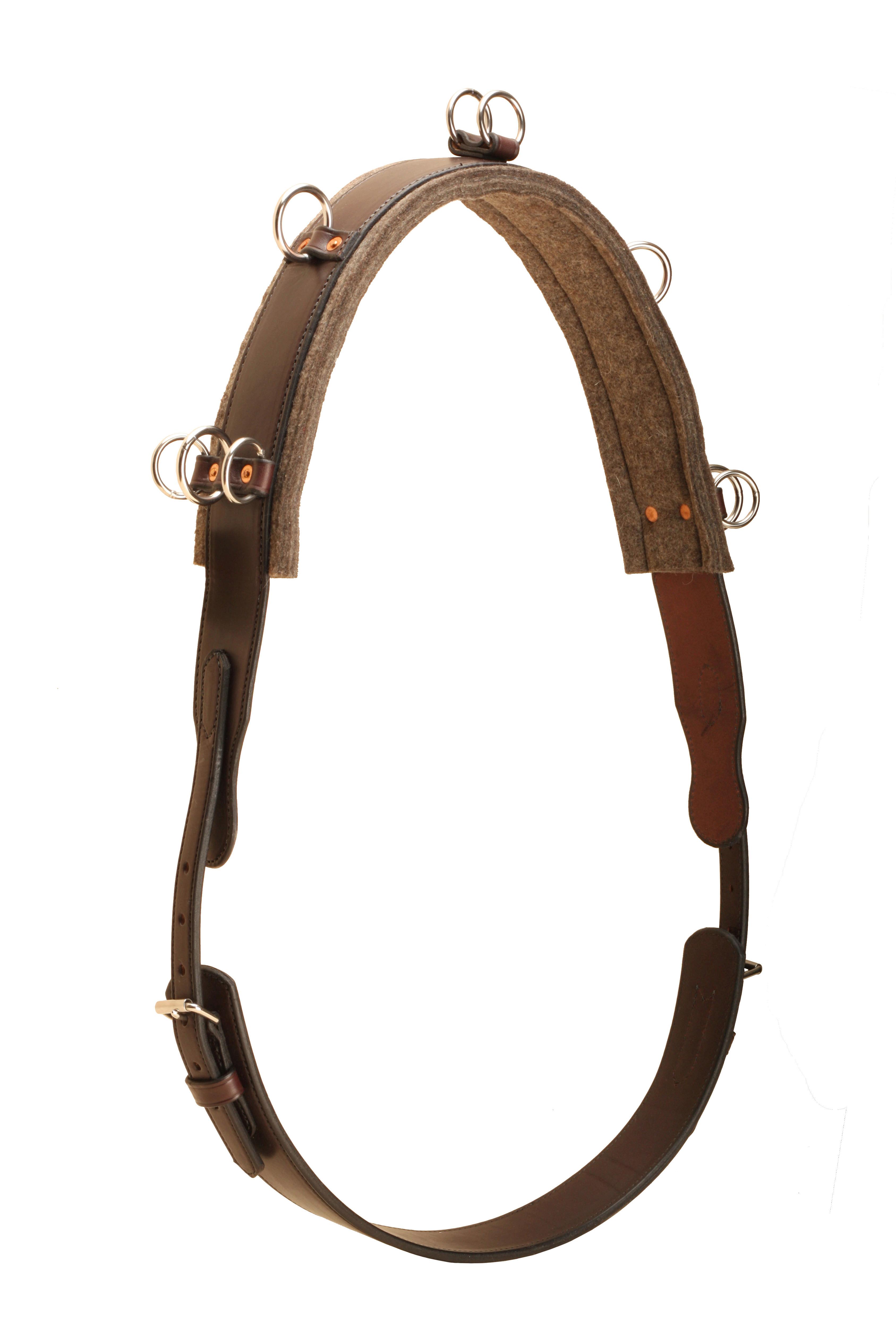Tory Leather English Bridle Leather Surcingle
