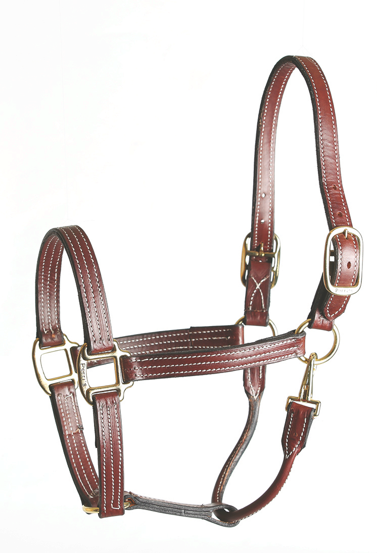 Perri's Leather Stable Halter