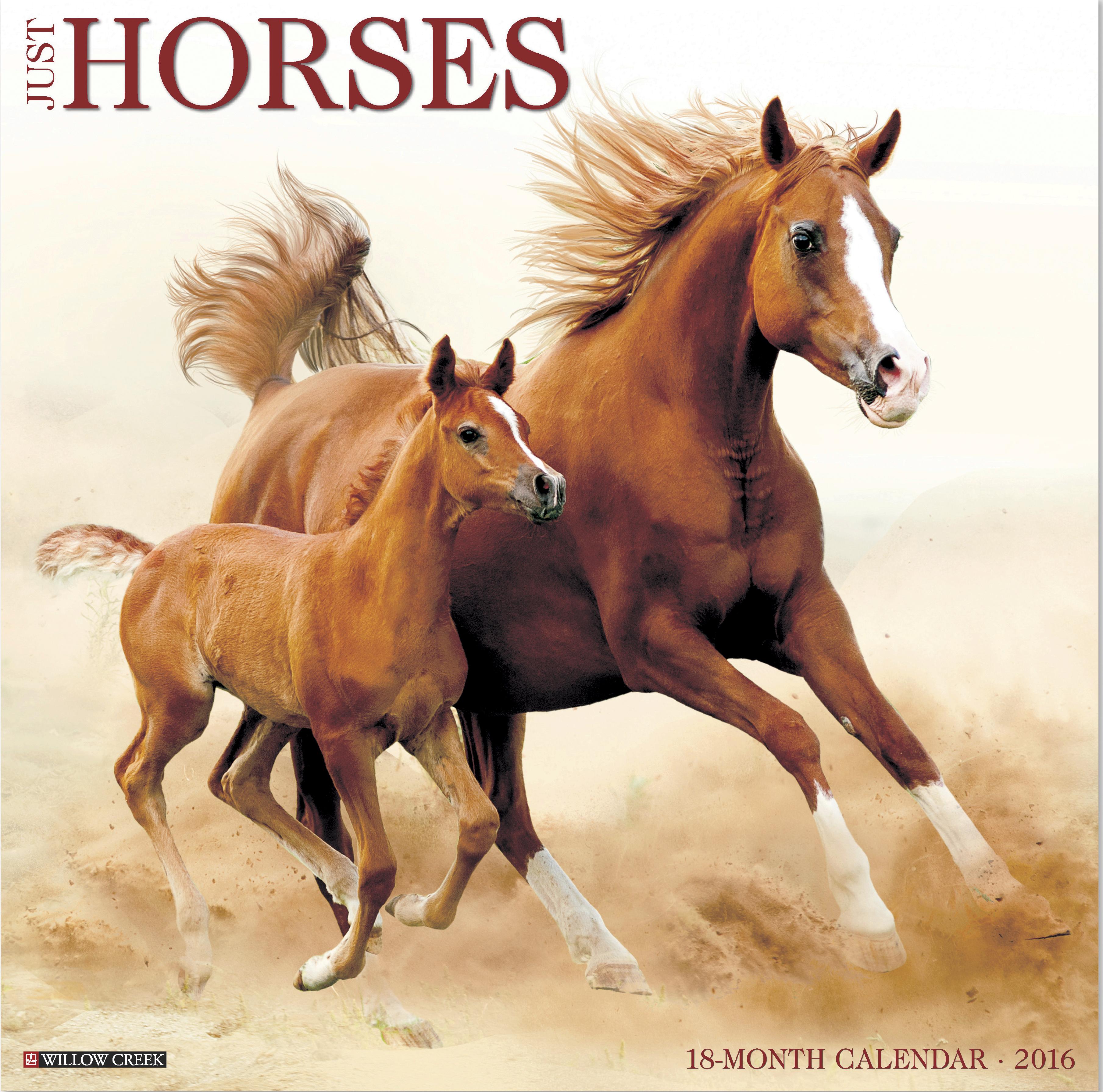 Just Horses Calendar - 2016