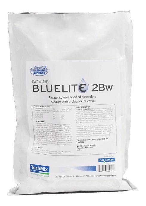 Bovine Bluelite 2Bw