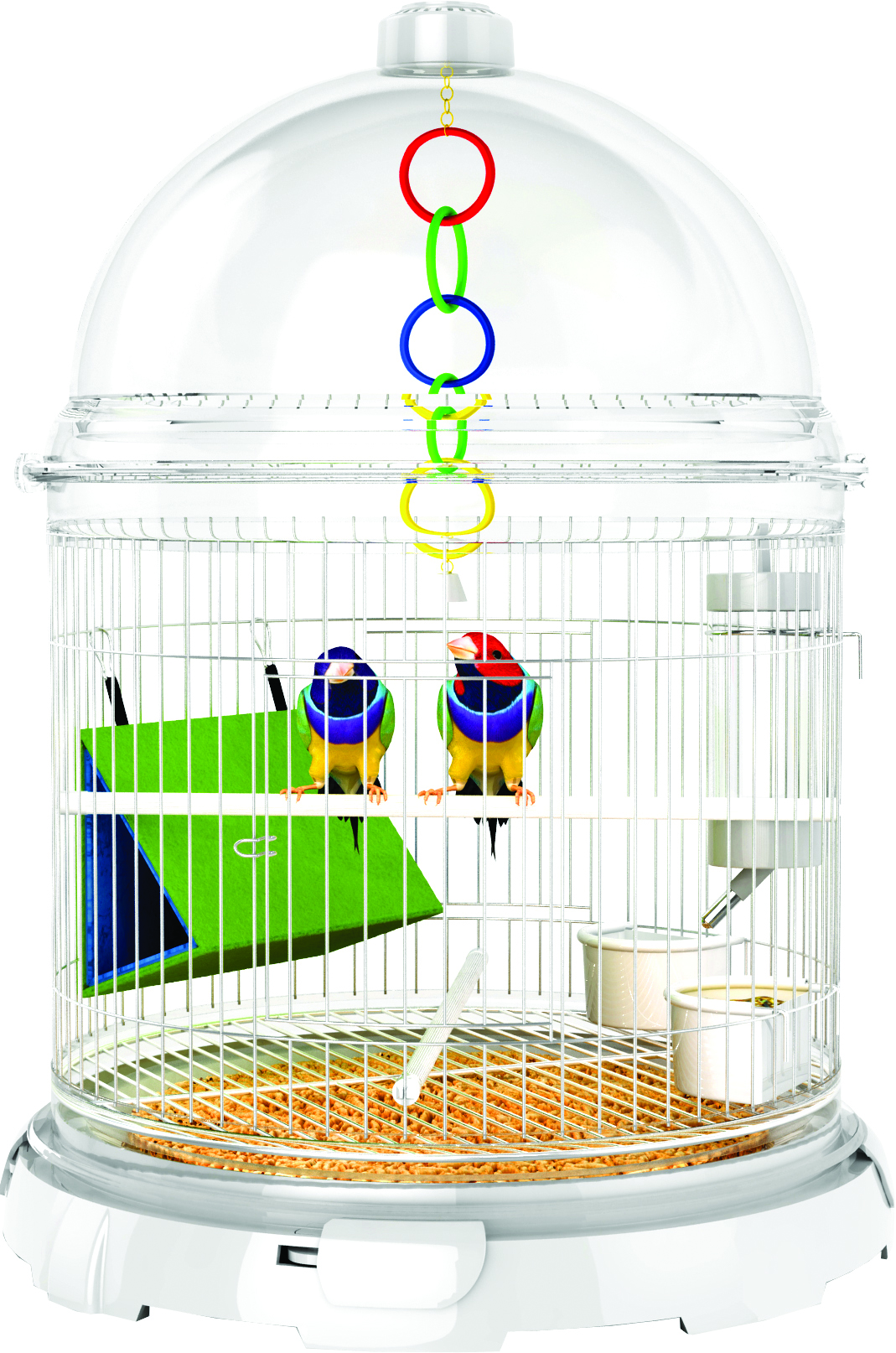 Bio Bubble Bird Bundle Kit