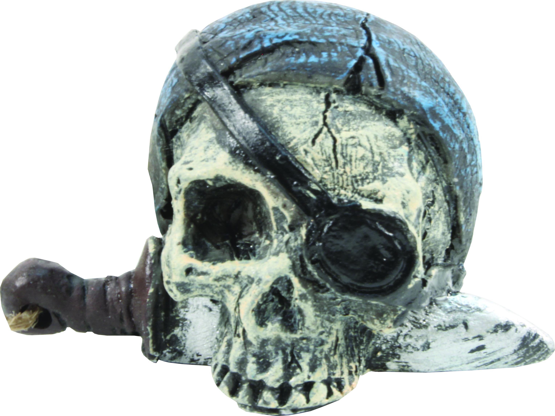 Bio Bubble Pirate Skull Ornaments