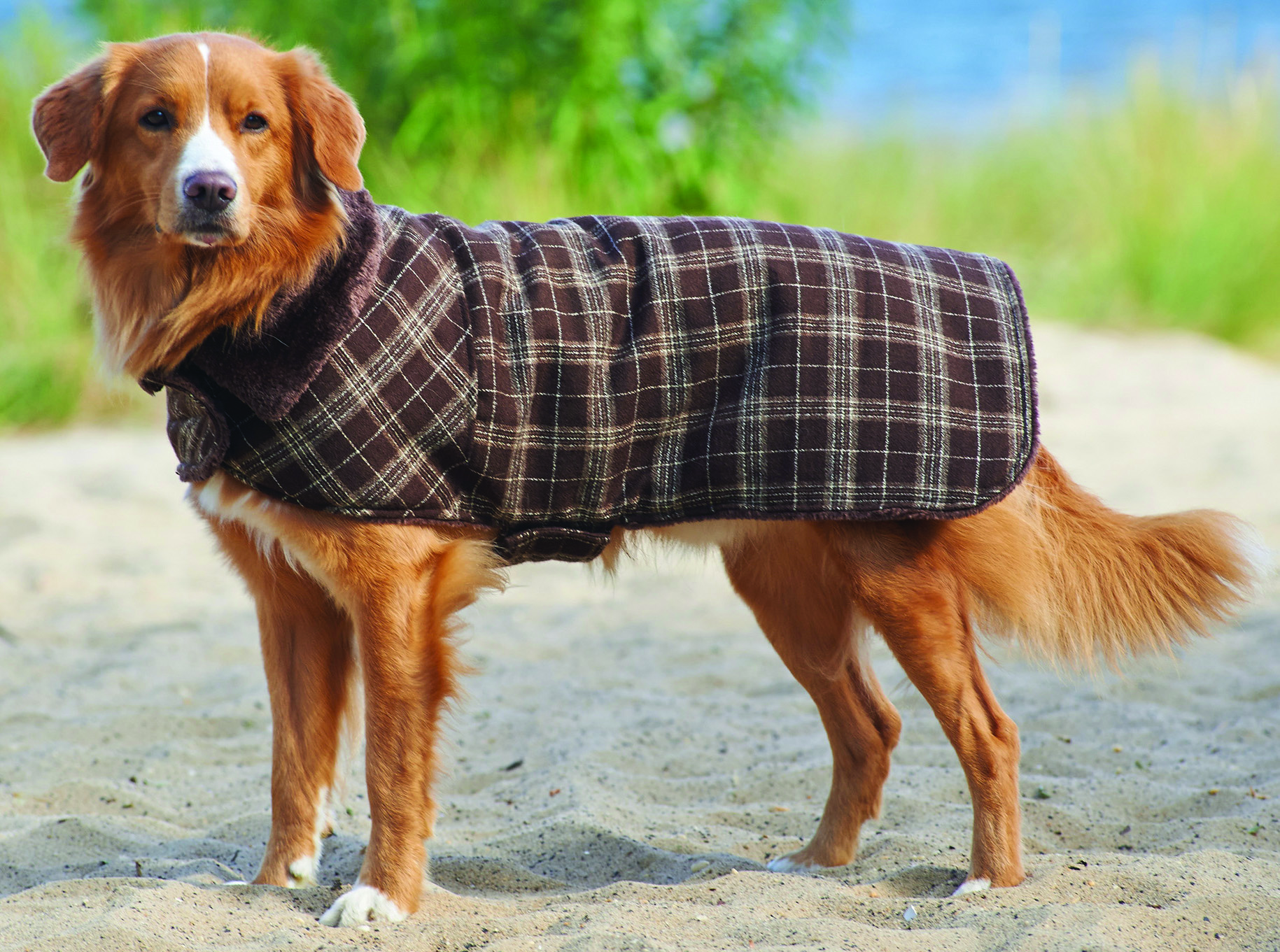 Fashion Pet Country Plaid Dog Coat