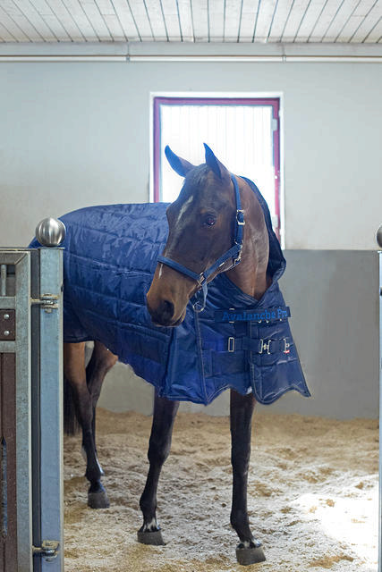 Horze Supreme Avalanche Pro Stable Rug
