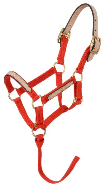 Tough-1 Mini Halter Break Away - 12 Pack