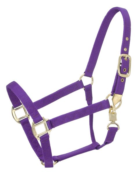 Tough-1 Premium Halter with Snap