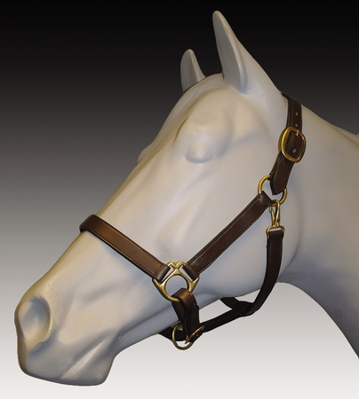 TuffRider Advantage Leather Halter With Comfort Padding
