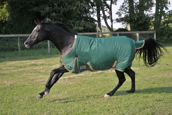 KODIAK 600D Heavyweight Turnout Blanket