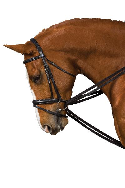 Kincade Leather Draw Reins