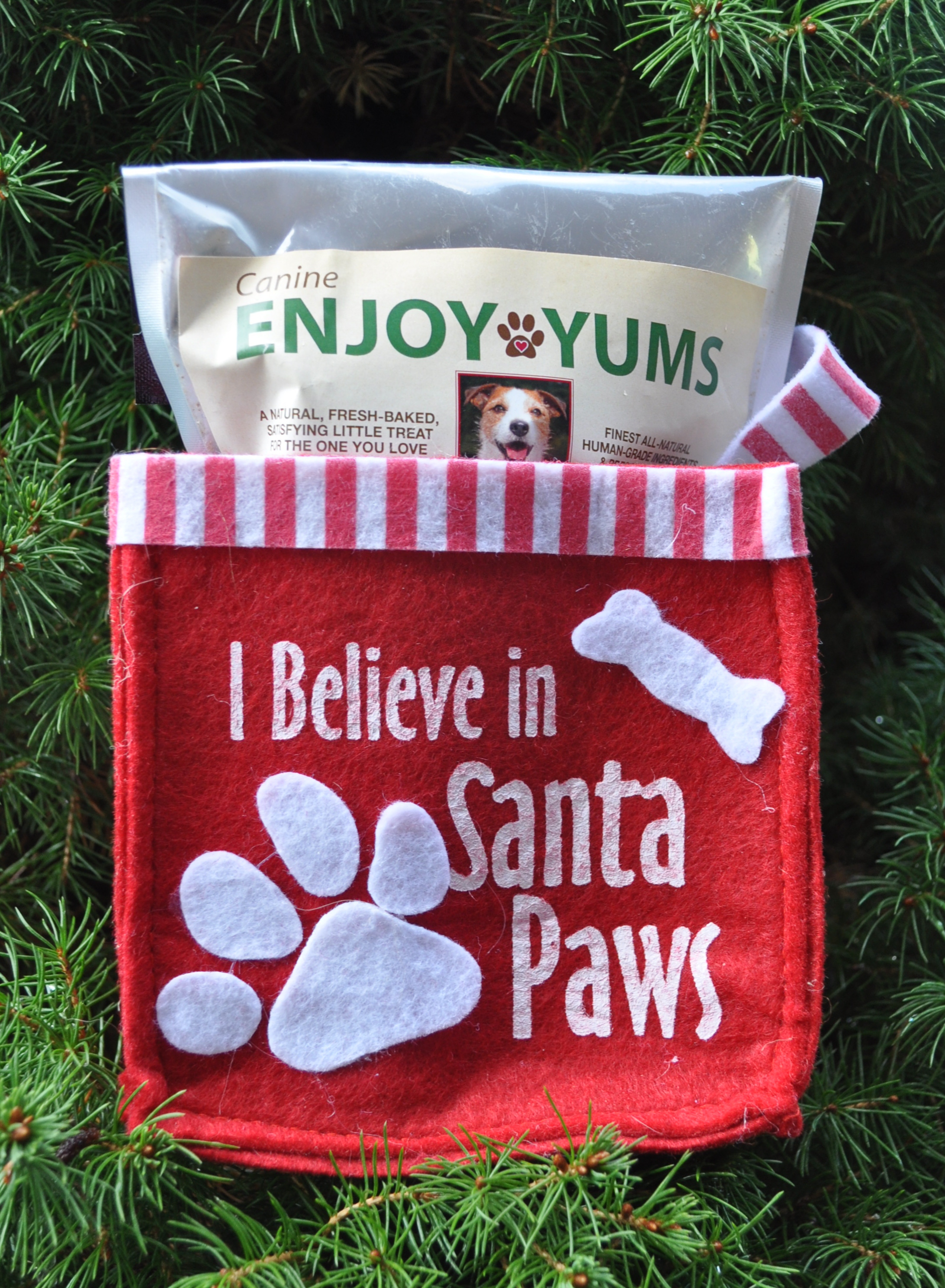"I Believe in Santa Paws"" Canine Enjoy Yums Bag"