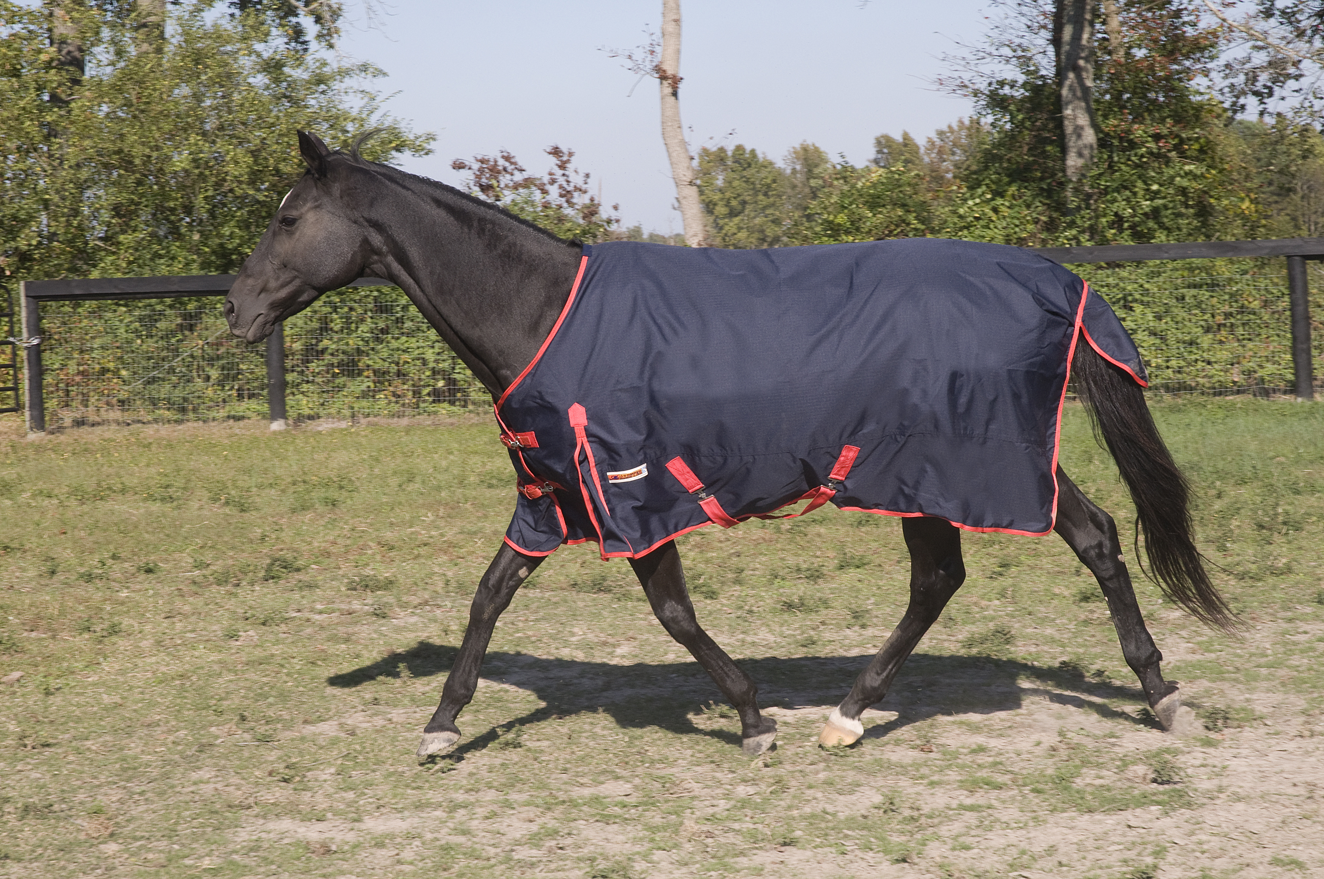 McAlister 600D Waterproof Turnout Sheet