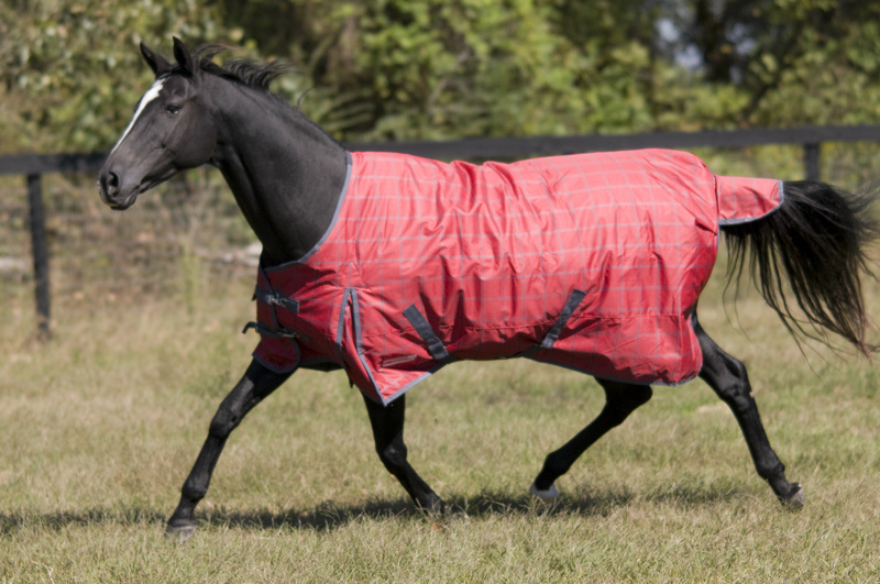 McAlister 600D Ripstop Mediumweight Turnout Blanket