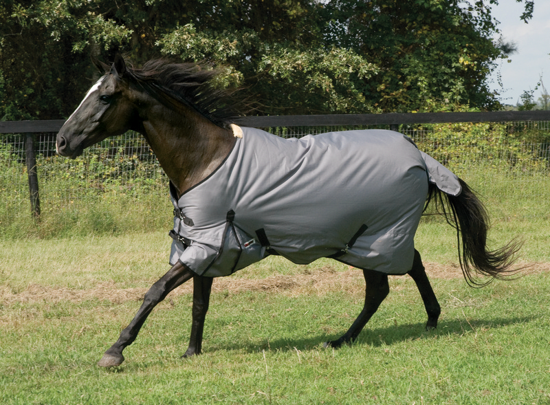 McAlister 600D Heavyweight Turnout Blanket