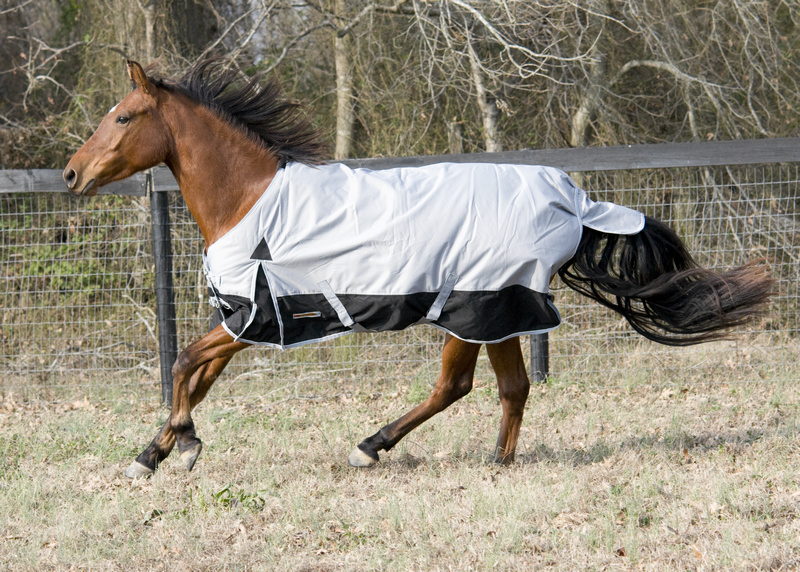McAlister Pony CLOSEOUT Mediumweight Turnout Blankets