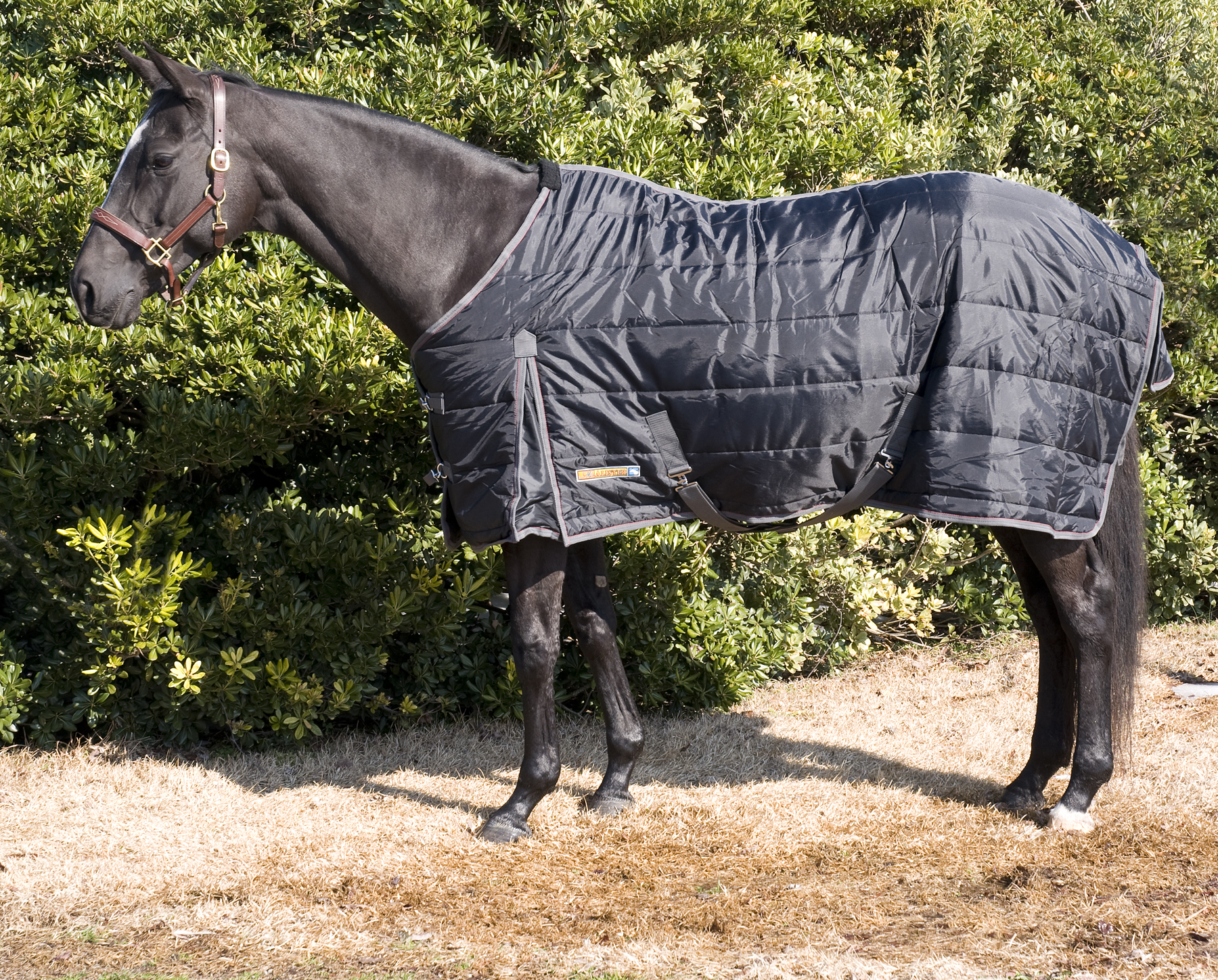 McAlister CLOSEOUT Heavyweight Stable Blankets