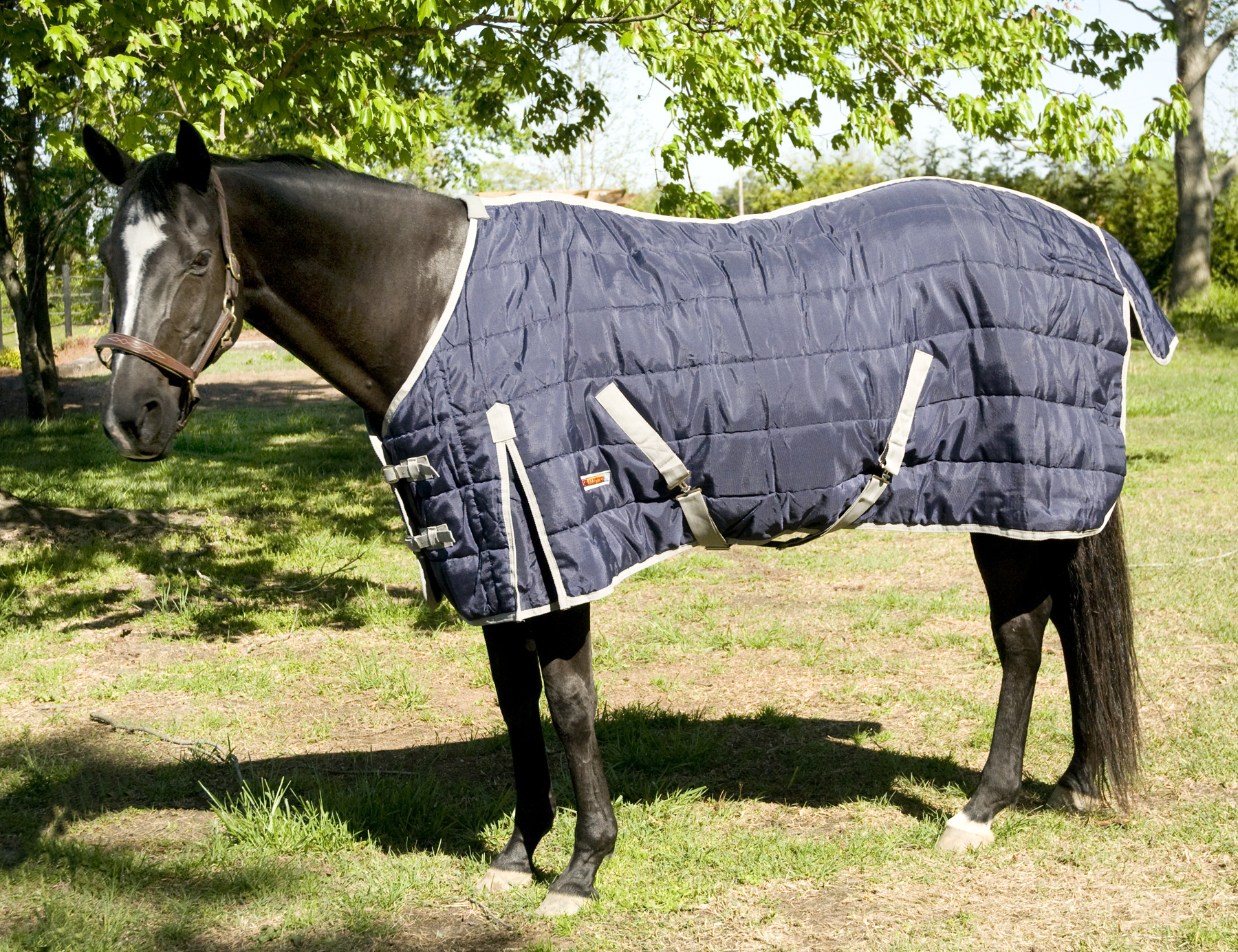 McAlister 1200D Stable Sheet