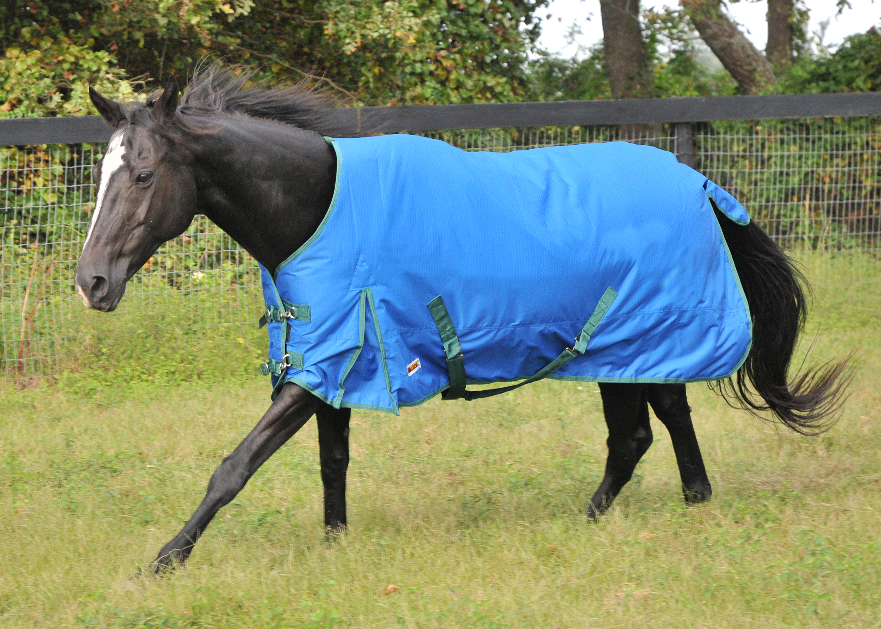 McAlister 600D Waterproof Mediumweight Turnout Blanket