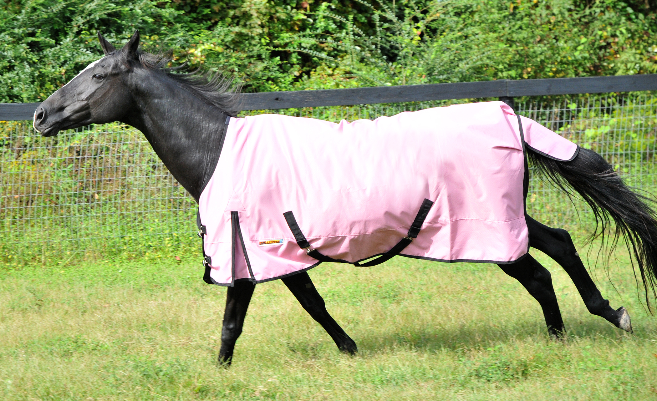 McAlister 600D Diamoind Ripstop Waterproof Turnout Sheet