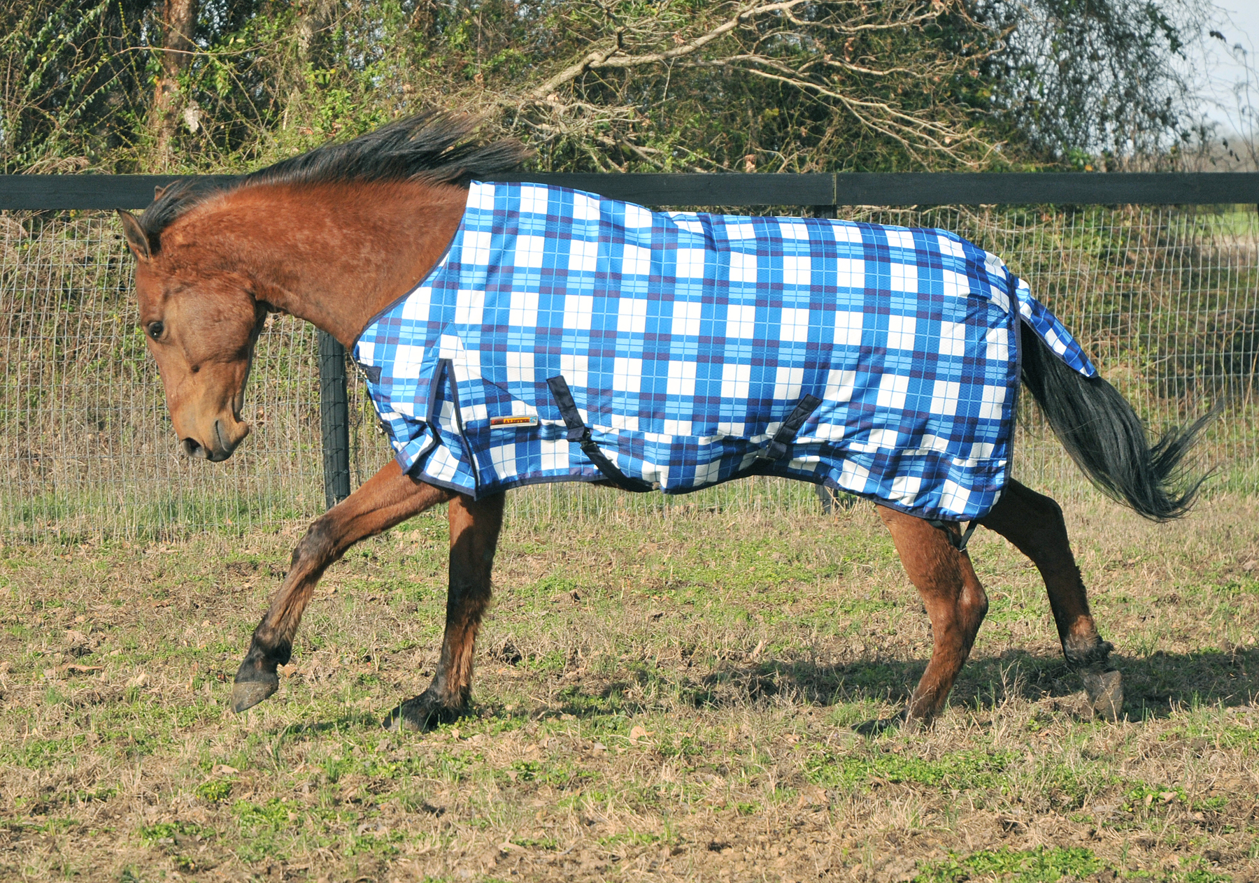 McAlister 600D Heavyweight Waterproof Turnout Blanket