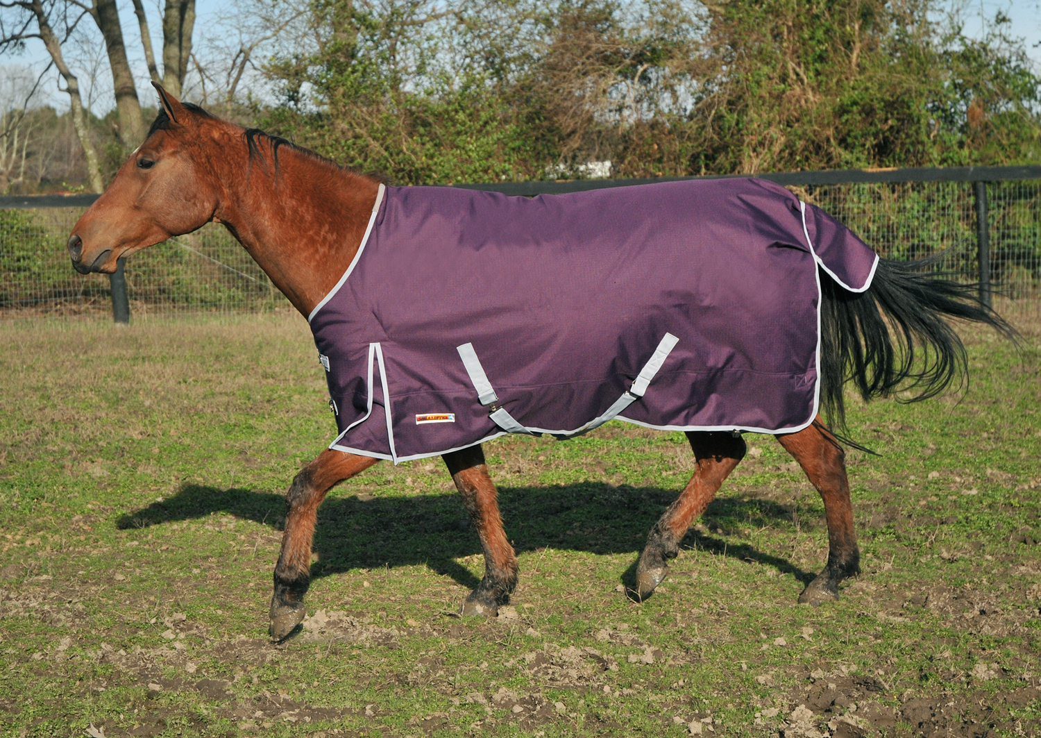 McAlister 1200D Mediumweight Waterproof Turnout Blanket