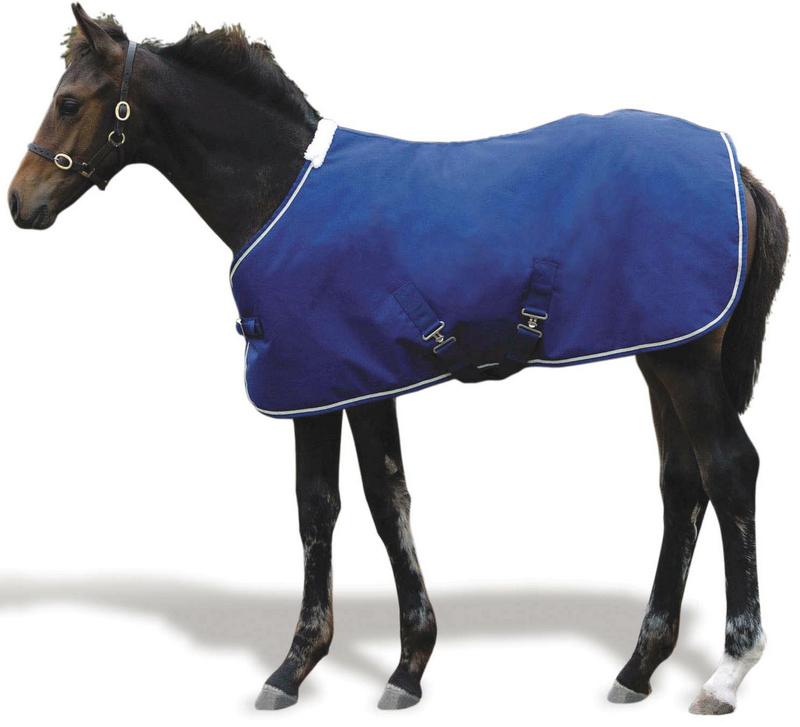 Weatherbeeta Landa Foal Blanket