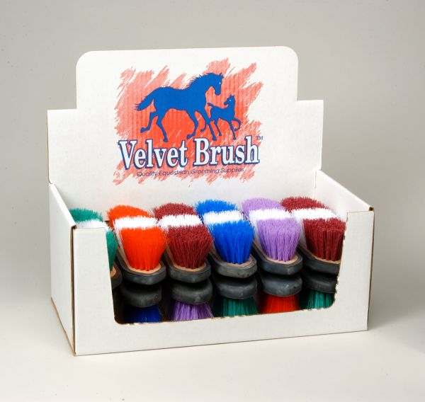 Rubber Back Two Tone Brush 12 Pack