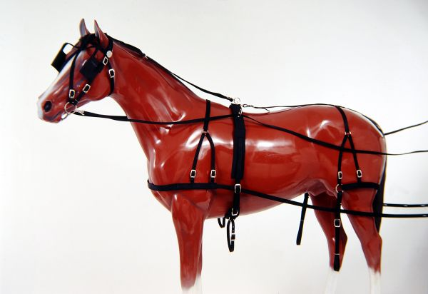 Tough-1 Nylon Horse Harness