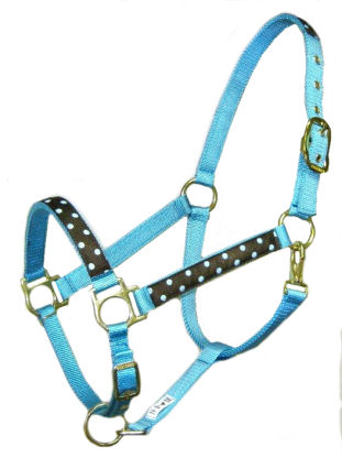 Ronmar Nylon Halter - Leather Crown/Double Buckle - Turquoise Polka Dots