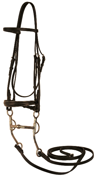 Gatsby Walking Horse Bridle
