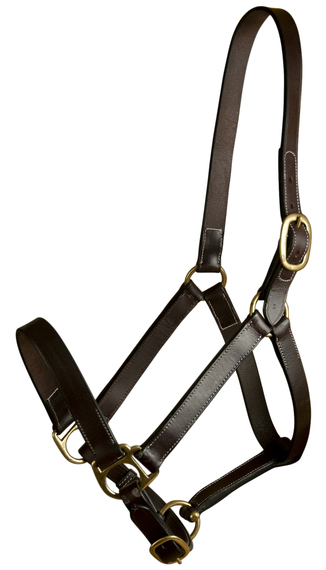 Gatsby Leather Adjustable Turnour Halter without Snap