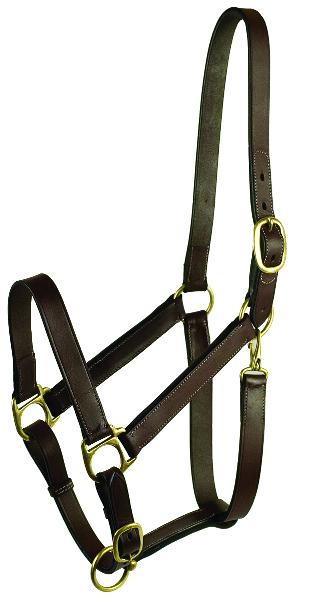 Gatsby Adjustable Turnout Halter with Snap