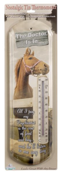 Gift Corral Nostalgic Tin Thermometer