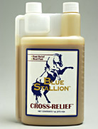 Blue Stallion Cross Relief