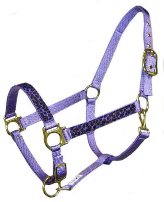 Ronmar Nylon Halter - Leather Crown/Double Buckle - Purple/Black Leopard