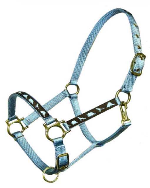 Ronmar Nylon Halter - Leather Crown/Double Buckle - Blue Dinosaurs