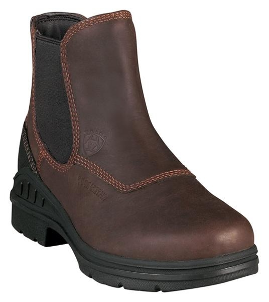 Ariat Woman's Barn Yard Twin Gore