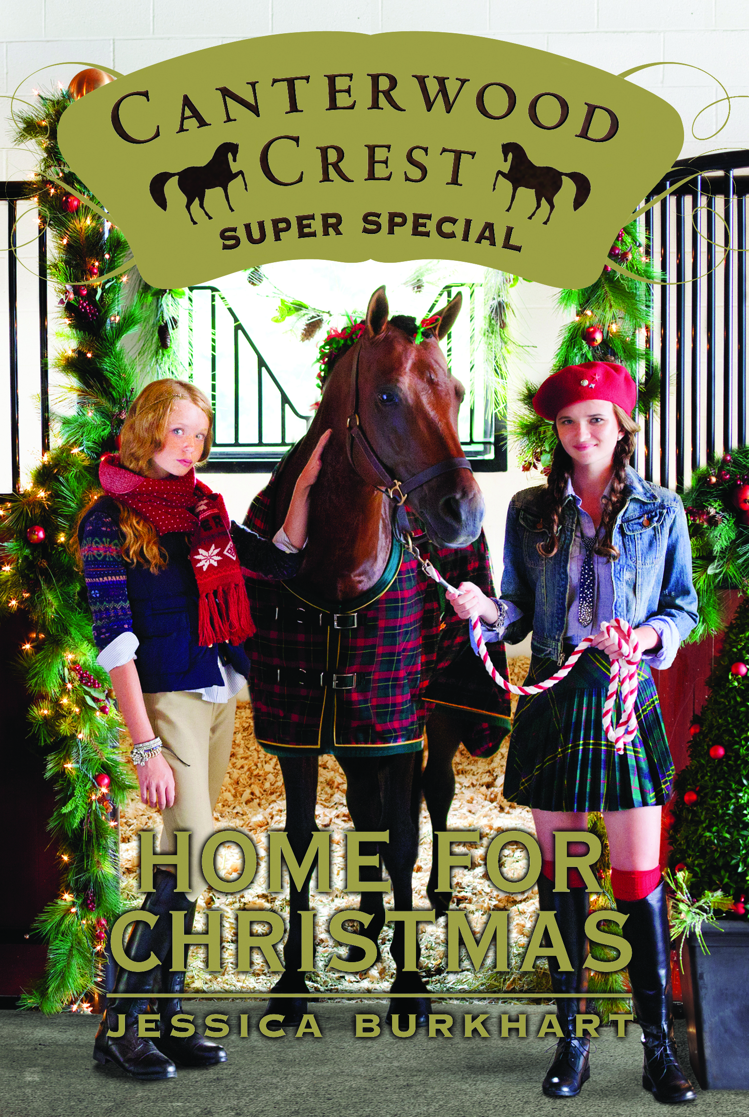 Home for Christmas, Super Special, Canterwood Crest Series