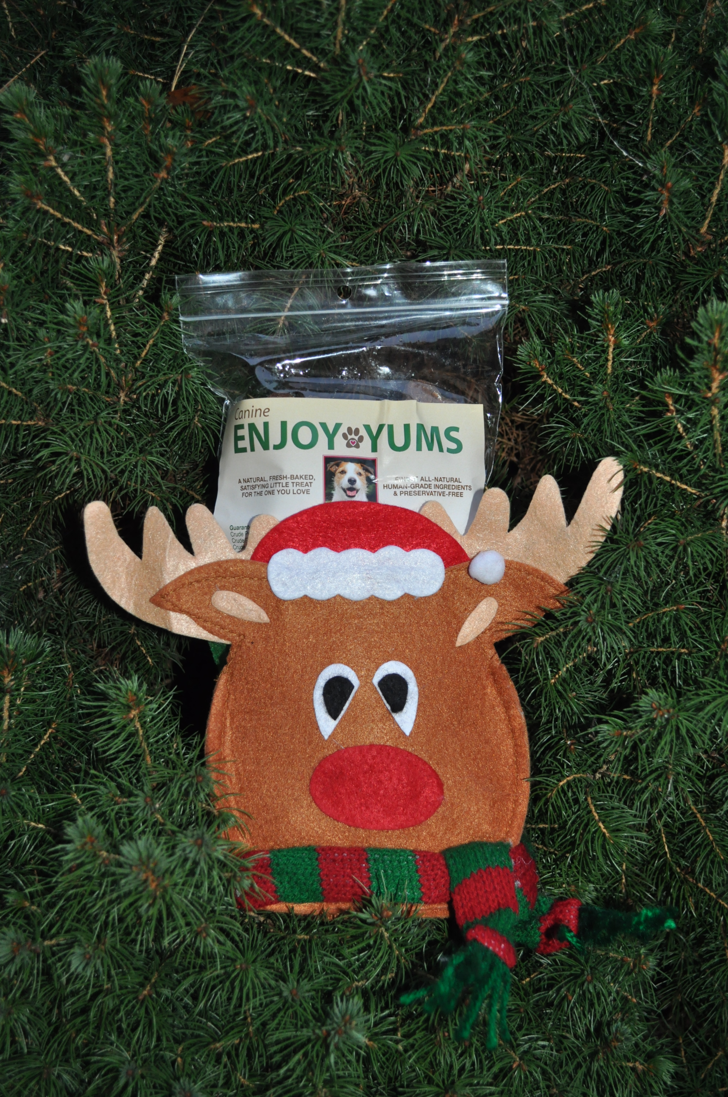 Reindeer Canine Enjoy Yums Bag
