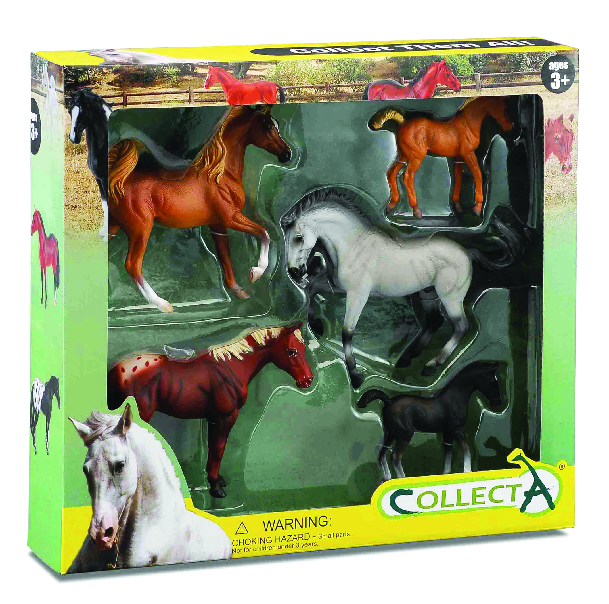 CollectA 5pc Box Set, Appaloosa, Chestnut & Grey Horses, Palomino & Black Foals