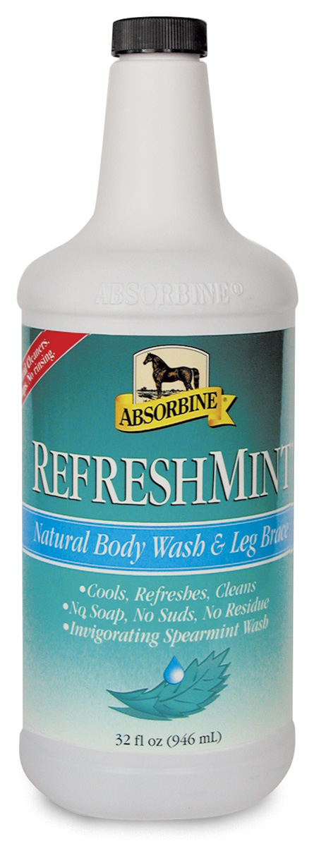 Absorbine Refreshmint Body Wash and Brace