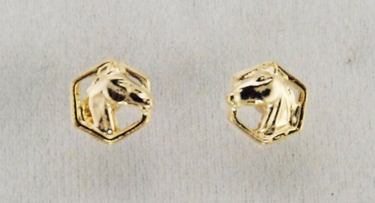 Finishing Touch Horse Head In Hexagon Earrings