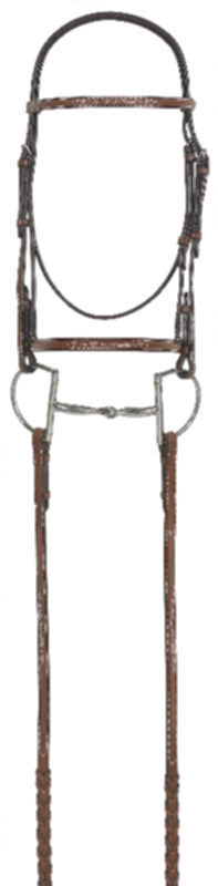 RODRIGO PESSOA Fancy Raised Bridle with Raised Laced Reins