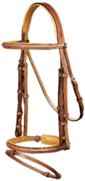 Pessoa Legacy Padded Bridle with Flash